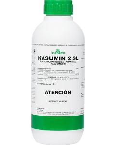 KASUMIN 2 SL